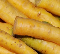 yellow-carrots