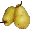 Poires, variété William jaune Bio
