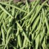 Colis haricots verts pour les bocaux Bio